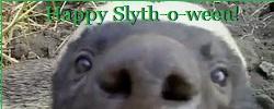 10.3.2017 badger siggy 250x100 Slythoween.jpg